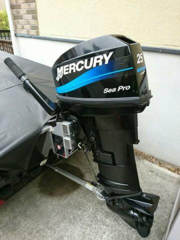2008 mercury 25 sea pro